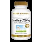 golden naturals scutellaria 2000