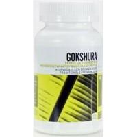 Gokshura Tribulus terrestris Ayurveda Health