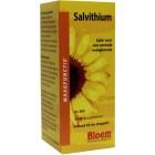 Bloem Salvithium