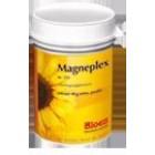Bloem Magneplex
