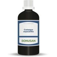 Bonusan Crataegus oxycantha