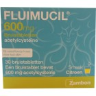 Fluimicil Bruis 600 mg