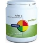 Plantina Yolac Probiotica