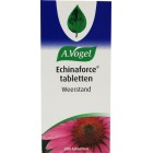 Echinaforce tabletten dr Vogel