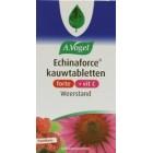 Echinaforce kauwtabletten forte vit C a. vogel