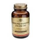Solgar Choline/Inositol 250/250
